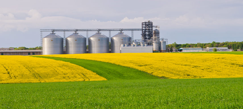 US ethanol industry could face losses of $10bn due to COVID-19